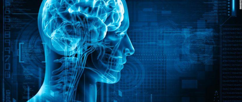 Creating a Personal Brain Training Program to Postpone Cognitive Decline